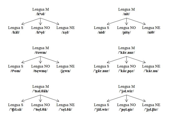 Evolución fonológica