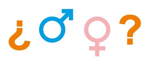 Género o clase gramatical